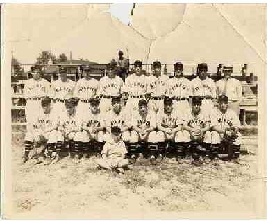 Greenwood Giants